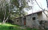 Ferienhaus Porto Vecchio Corse Sauna: Ferienhaus Monte Pianu