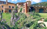 Ferienhaus Vinci Toscana: Ferienhaus Leonardo