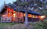 Ferienhaus Norwegen: Ferienhaus In Ål, Buskerud Nord Für 8 Personen ...