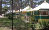 Camping Italien: Zelt Auf Dem Campingplatz Albatros Für Maximal 5 Personen In ...
