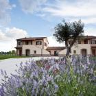 Ferienwohnung Italien: Ferienwohnung Assisi