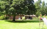 Ferienhaus Deutschland: Schönes 4-Sterne-Ferienhaus Am Wald Mit Eigenem ...