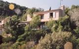 Ferienhaus Provence: Provenzalische Villa Mit 1000 Qm Hanggrundstück Und ...